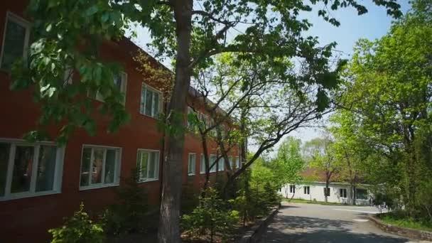 fák az óvoda udvarán
