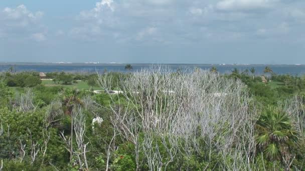 Golfové hřiště v blízkosti oceánu