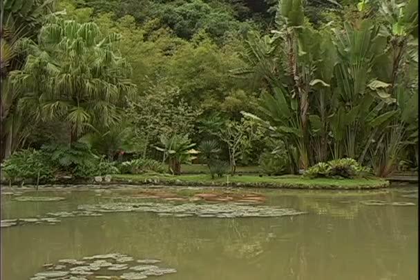 Zahradní jezírka v Rio de Janeiru