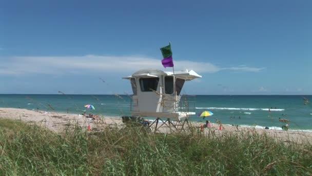 Palm Beach s plavčík Hut