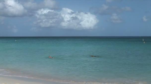 Spiaggia sul litorale delloceano su Aruba