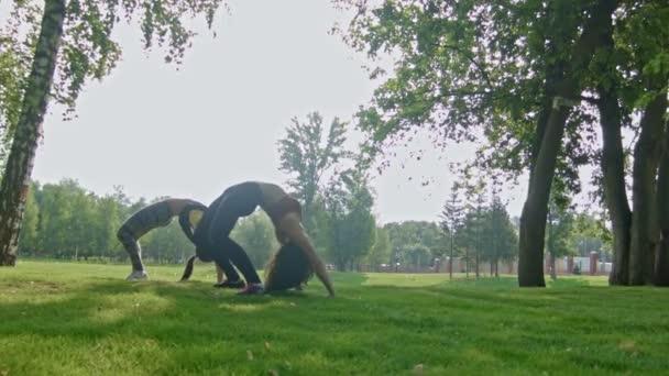 Fiatal, vonzó sport nők csinál stretching gyakorlatok a gerinc, a parkban, dolly lövés