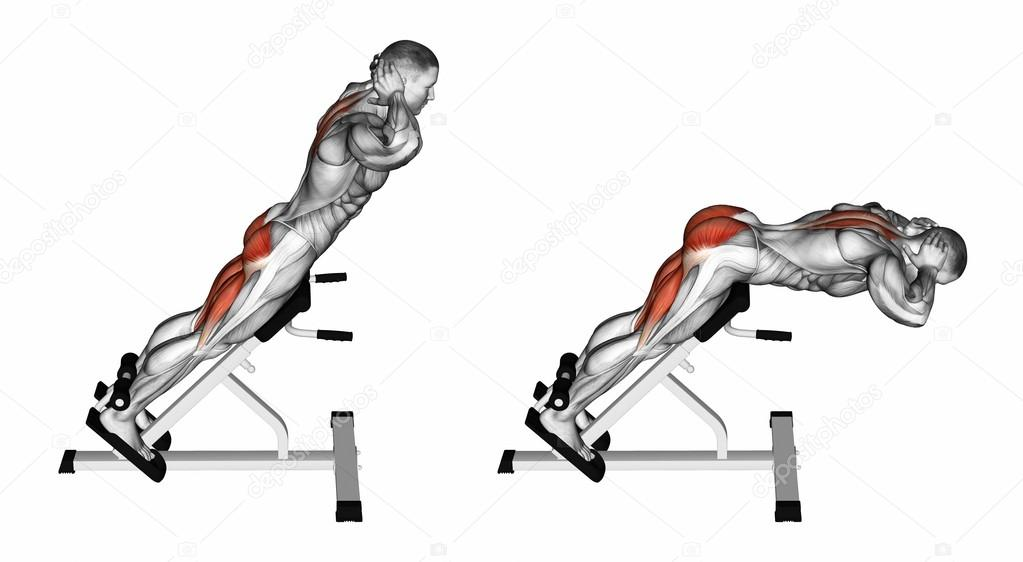 Hyperextension Exercise Fitness Stock Photo