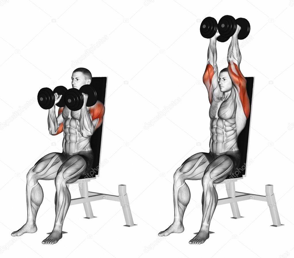 Dumbbell Seated Shoulder Press Parallel Grip — Stock Photo ...