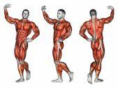 Projekce těla. Apollo pozice