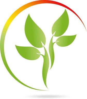 Logo, Pflanze, Blatt, Heilpraktiker
