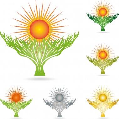 Logo, Pflanze, Sonne, Baum, Heilpraktiker