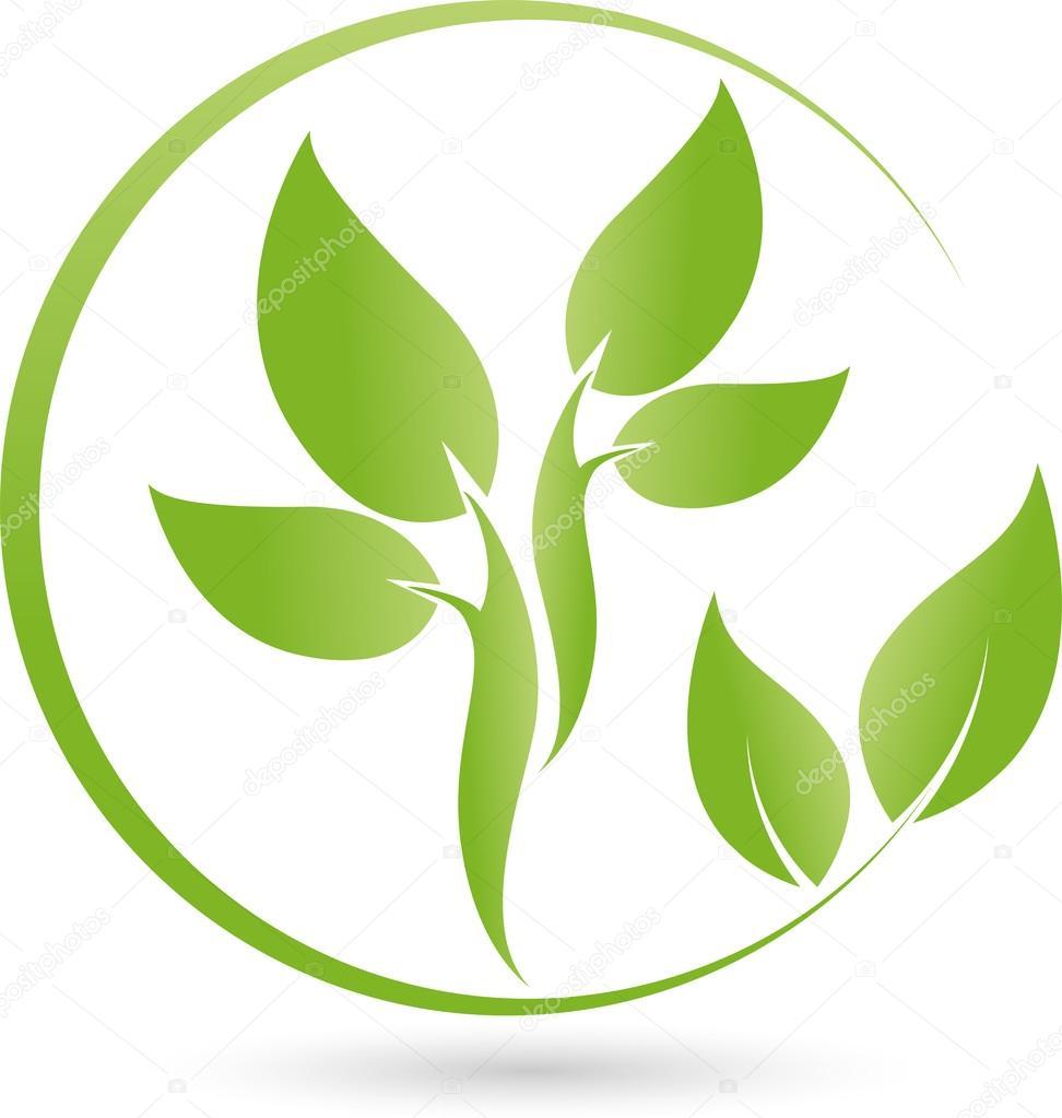 Pflanze, Blatt Logo, Bio, Heilpraktiker