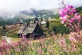Staré chaty mezi květy