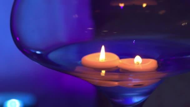 Abends Mit Beleuchtung | Schweben In Einer Glasvase Auf Violettem Hintergrund Beleuchtung