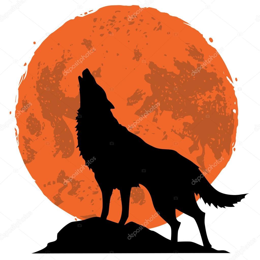Lobo Aullando A La Luna En La Medianoche Archivo Imágenes