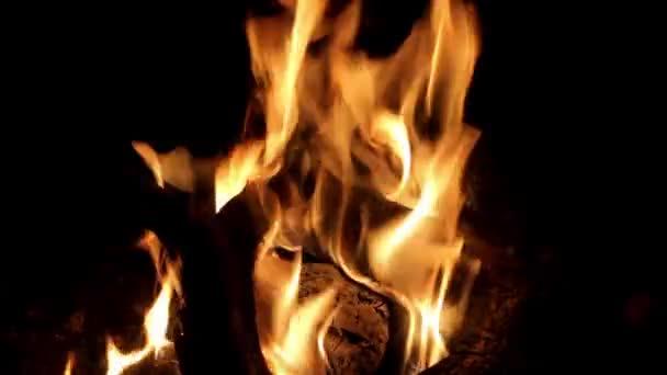 dřevo hoří táborák