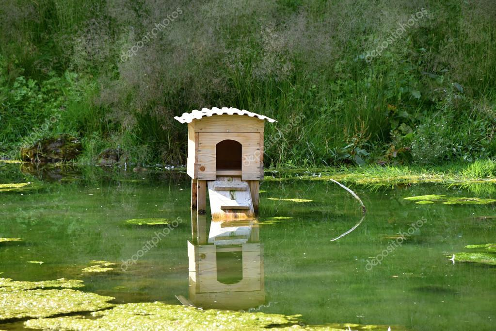 Im genes estanques con patos casa de madera en un nido for Imagenes de estanques para patos