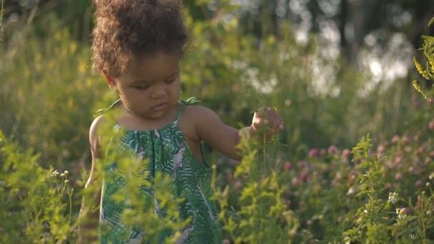Krásný americký dítě v zelené trávě na povaze