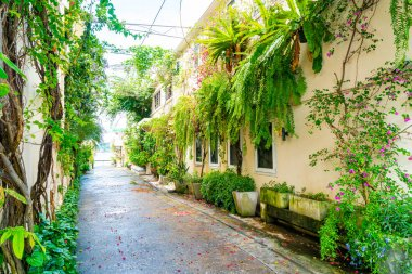 Colorful and beautiful building old town with tree and plant in Songkhla, Thailand