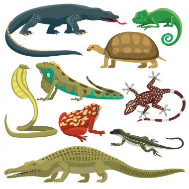 Reptiles animals vector set.