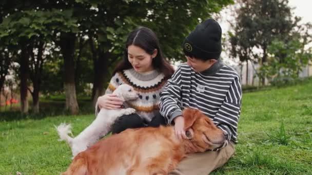 két ember játszik a kutyákkal
