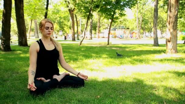 Jóga a park széles lövés fiatal nő