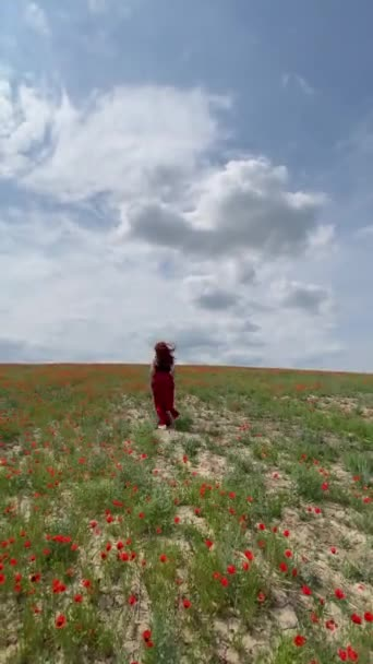 A vörös hajú nő ruhában végigfut a mákmezőn és pózol..