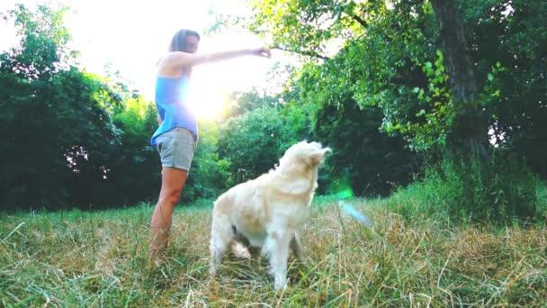 Fiatal lány a parkban található egy nagyon aranyos Golden Retriever móka játék, takarmány neki egy élvezet, lassú mozgás, kutya, ugrás, hogy az élelmiszer