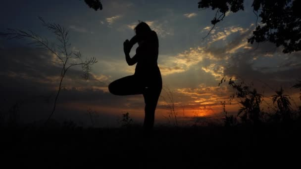 Silhouette of Female Girl Yoga on the Background of the Sunset Sky Tree Pose