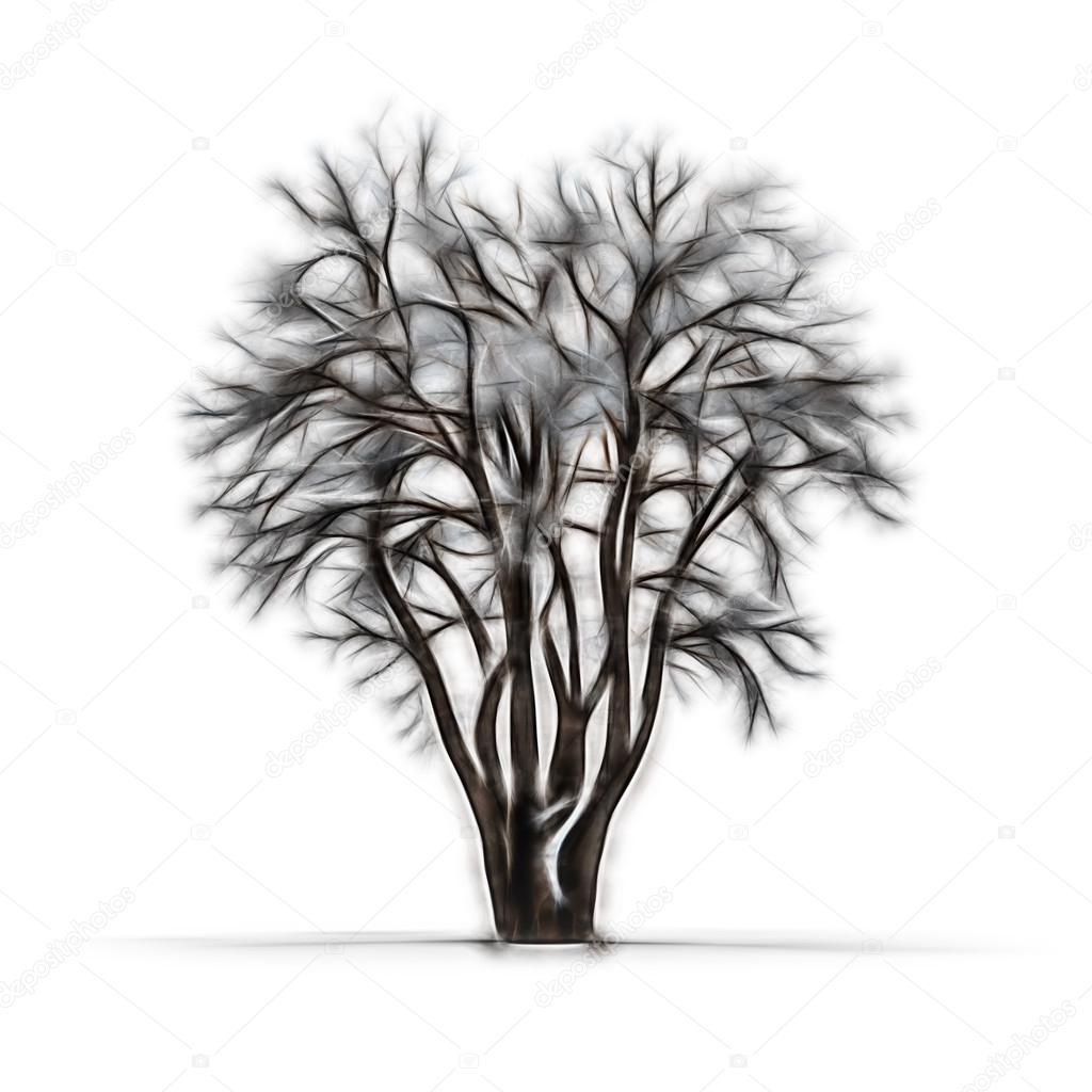 Dibujo De árbol De Invierno Sin Hojas Sobre Fondo Blanco Foto De