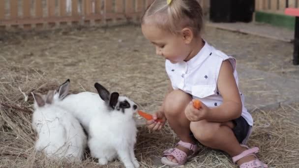Roztomilá holčička krmení králíků z ruky