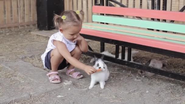 Niedliche kleine Mädchen, die Fütterung von Kaninchen aus der hand