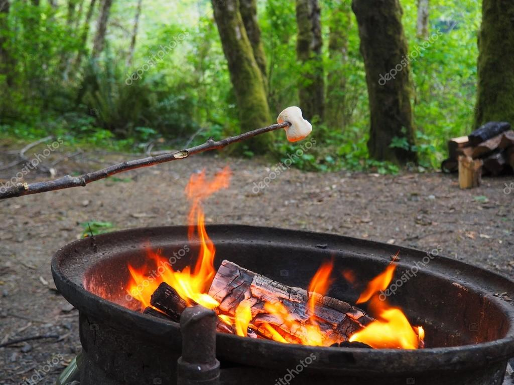 Roasting Marshmallow Over Campfire In Green Forest Stock Photo Camping Next To A Hot Fire And Cooking Marshmallows By JessHarrison