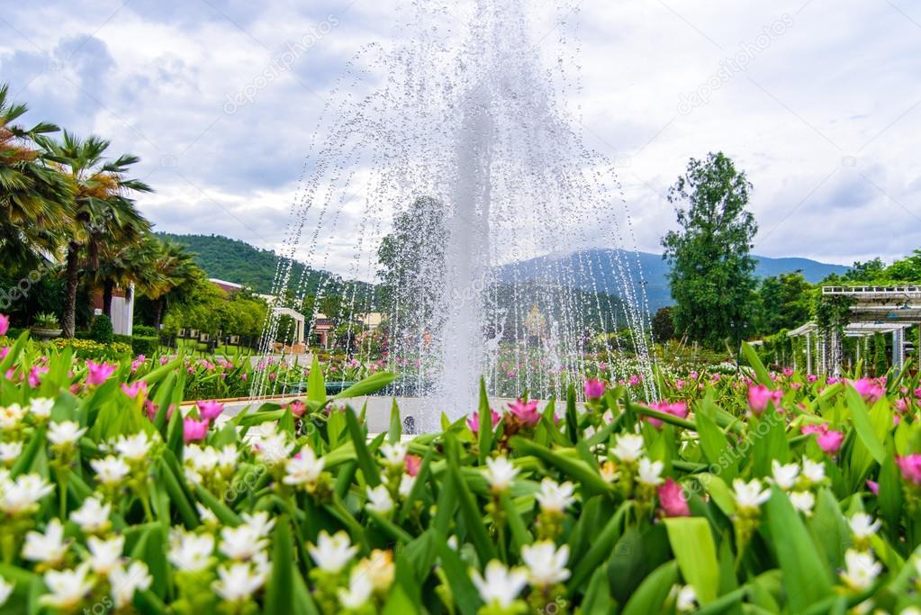 Fontaine dans le jardin de fleur de Siam-Tulip à Chiang Mai ...