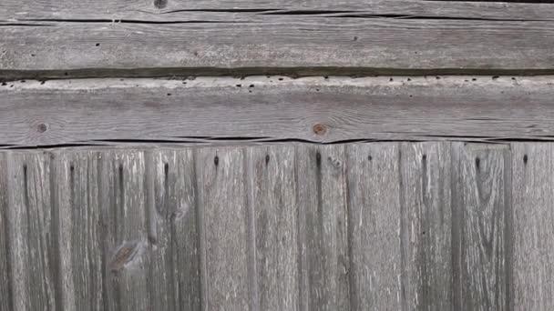 textura šedé masivní dřevěné stěny