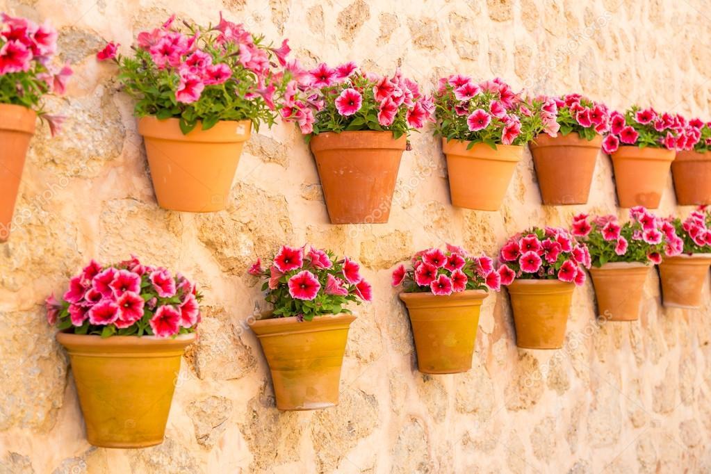 Vasi di fiori sul muro foto stock iushakovsky 116640442 - Macetas en la pared ...