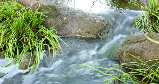 Rychle tekoucí řeky s kameny ve vodě 4k