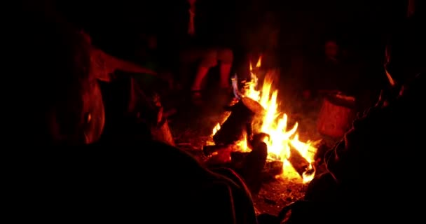 People Sitting By Campfire 4k