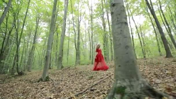Young Woman Walks In Forest