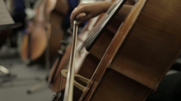 Cellist spielt Musikinstrument