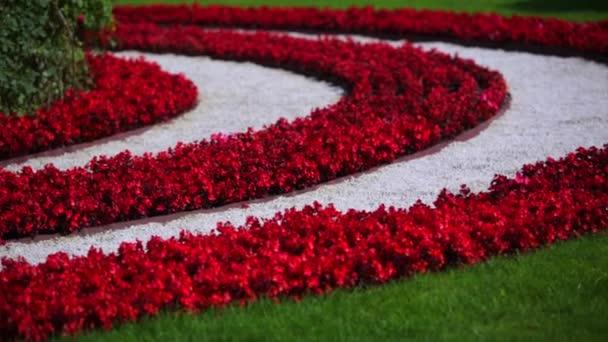 prokládané lůžko červené květy