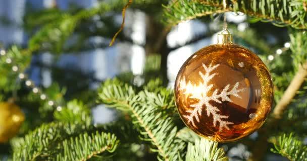 Lesklé vánoční koule na větvi stromu jedle