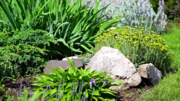 Upravené dvorek a zahrada. Krásné upravené zahradě