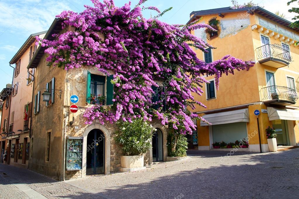 Sirmione casa nella parte vecchia della citt con for Bougainvillea bonsai prezzo