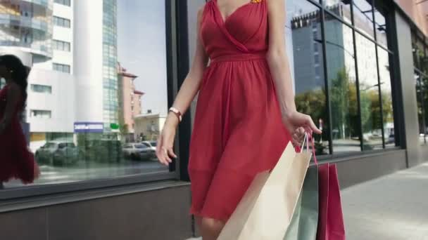 Attractive young woman returning from the shopping mall with her purchases