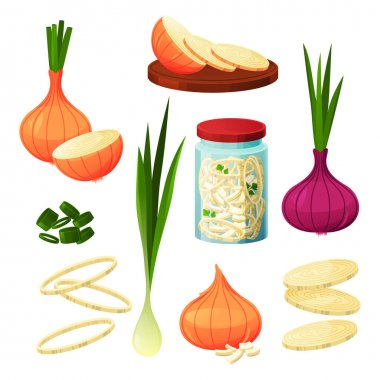 Onion food vegetable products, cooking and eating ingredients, vector flat design. Organic natural shallot and leek onion salad condiments and cuisine flavoring seasonings, fresh and dried spices icon