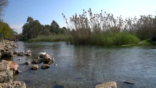 Akyaka 'daki Azmak Nehri, Mugla Köyü, Türkiye
