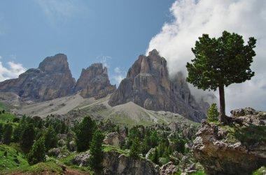 Dolomites landscapes, Sella and Sassolungo