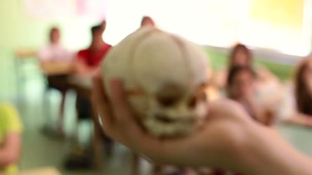 Biology In Elementary Schools. Student at  anatomy class holding human skull in his hand. Hamlet scene. Human skull in actor hand
