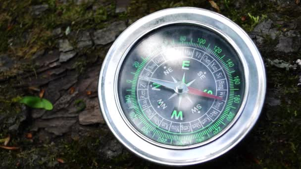 Compass lying on a tree, the arrow rotates abnormally.