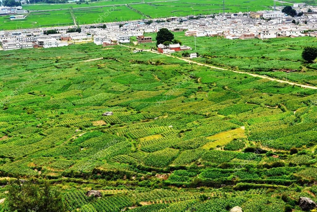 Terraza De Banco En Cuenca De Dali Fotos De Stock Yshgcs