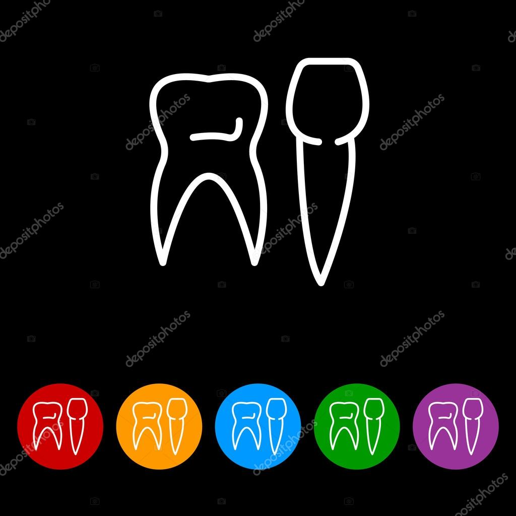 Different Types Of Human Teeth Stock Vector C Ppvector 120411128
