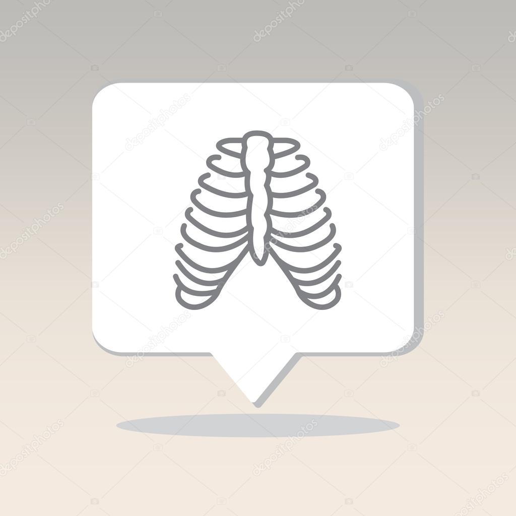 huesos humanos, costillas — Vector de stock © PPVector #120415318