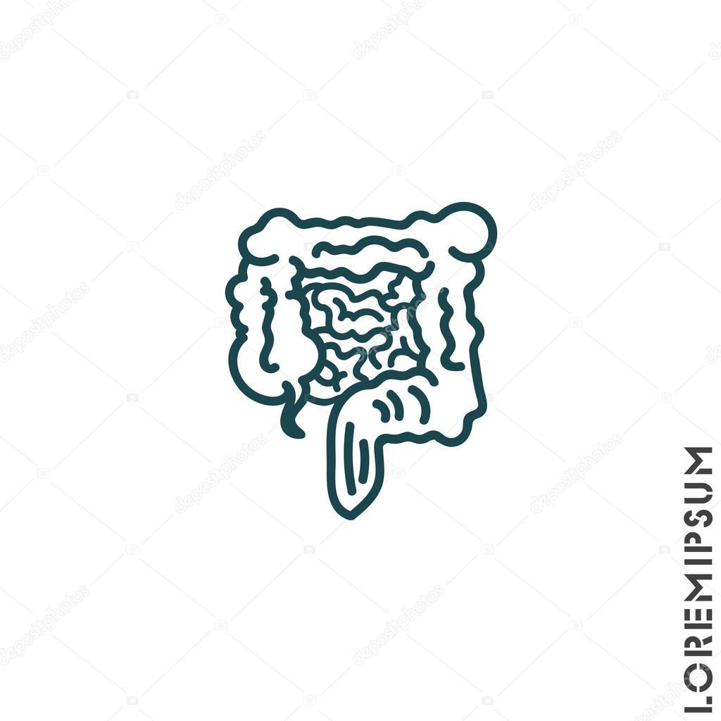 Organ des Menschen, Darm — Stockvektor © PPVector #120425126